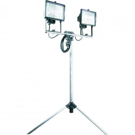 Eclairage Exterieur 2 spots 500 W